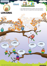 Division worksheet - Love Birds