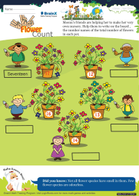 Flower Count worksheet