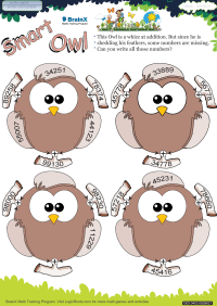 Smart Owl worksheet